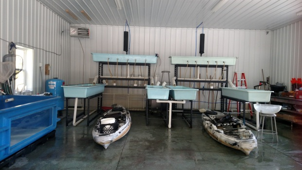 The Walleye Rearing Facility. Photo Credit: Zintkala Eiring
