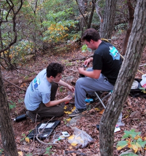 Students collecting samples and taking measurements. Photo Credit: David Marsh