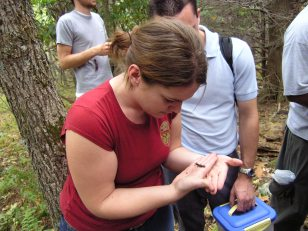 Liberty University students learn about Peaks-of-Otter salamander ecology. Photo Credit: Norm Reichenbach
