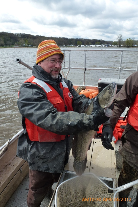 Daniel Gefell, biologist for the USFWS, holding a Bowfin at one of the sampling sites, USFWS.