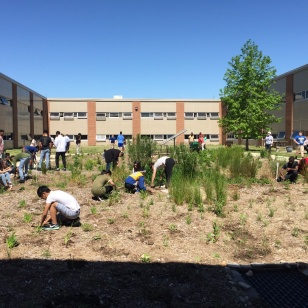 Caesar Rodney High School in Dover, Delaware has made a courtyard that students walk through daily to get between building wings into a very engaging rain garden that collected roof water, Credit: Brian Marsh/USFWS