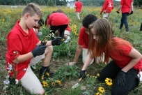 Students adding some diversity to their meadow at Shue-Medil Middle School, Credit: Rick Mckowski