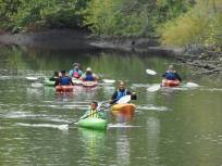 Paddlers at John Heinz National Wildlife Refuge