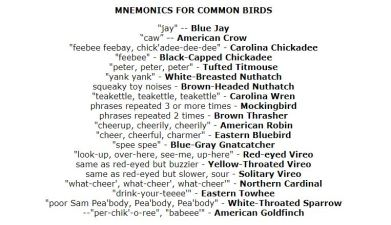 Mnemonics of common birds, screen capture provided by fernbank.edu