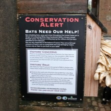 Educational signs on site discuss bat conservation. Credit: U.S. Fish & Wildlife